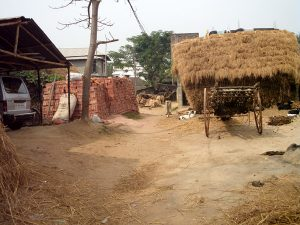 selo indija